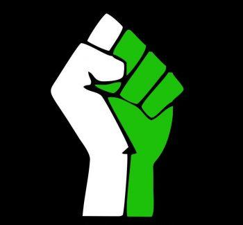 Occupy Nigeria (2)